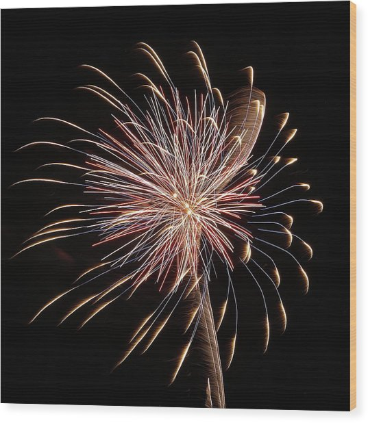 Fireworks From A Boat - 16 Wood Print
