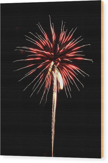 Fireworks From A Boat - 4 Wood Print