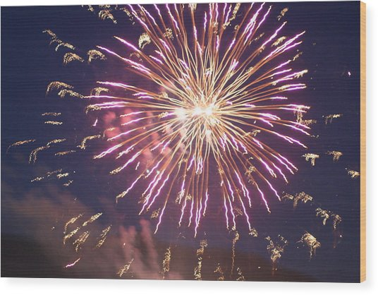 Fireworks In The Park 2 Wood Print