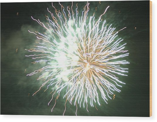 Fireworks In The Park 4 Wood Print