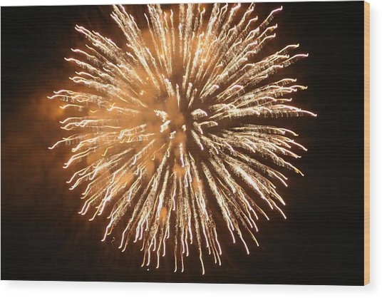 Fireworks In The Park 5 Wood Print