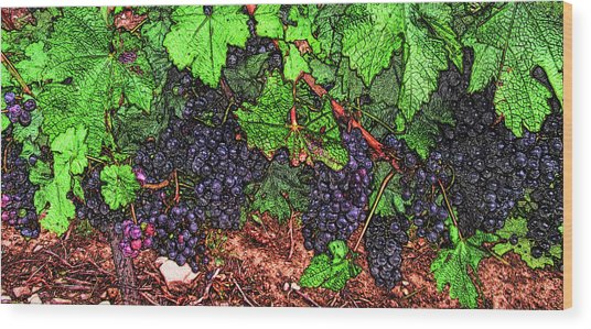 First Came The Grape Wood Print