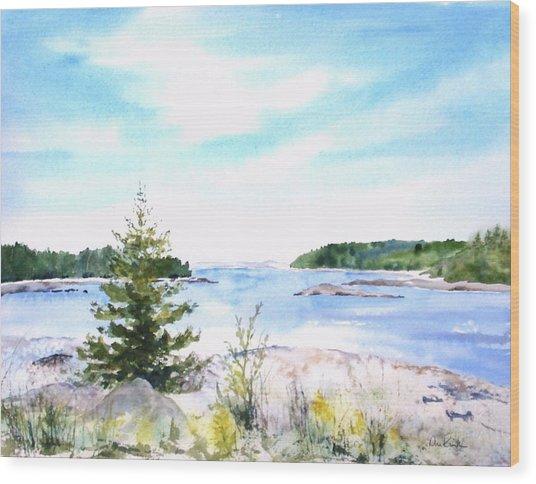 First Impressions, Maine Wood Print