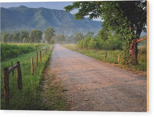 First Light - Sparks Lane At Cades Cove Tennessee Wood Print