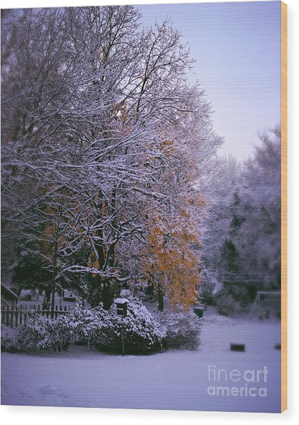 First Snow After Autumn Wood Print