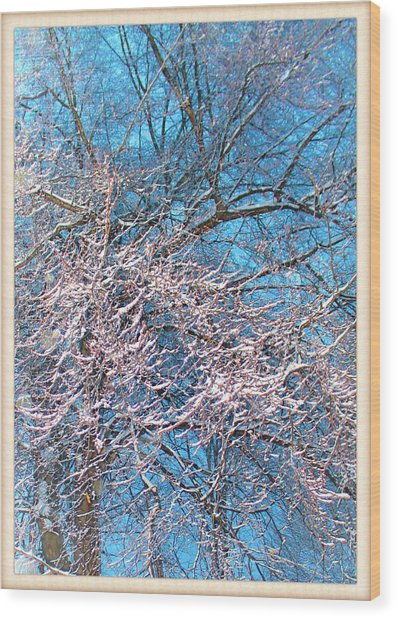 First Snow At Dawn Wood Print
