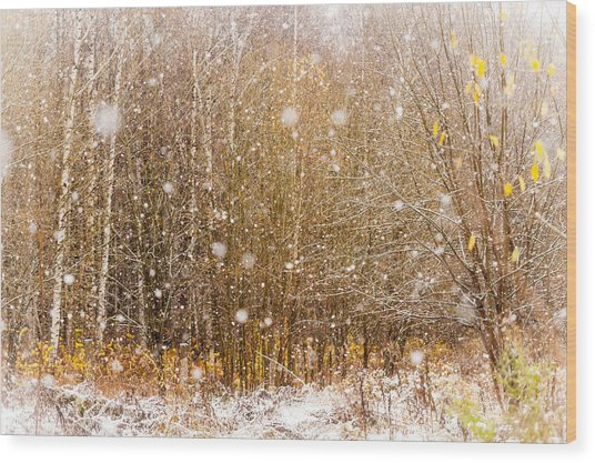 First Snow. Snow Flakes I Wood Print