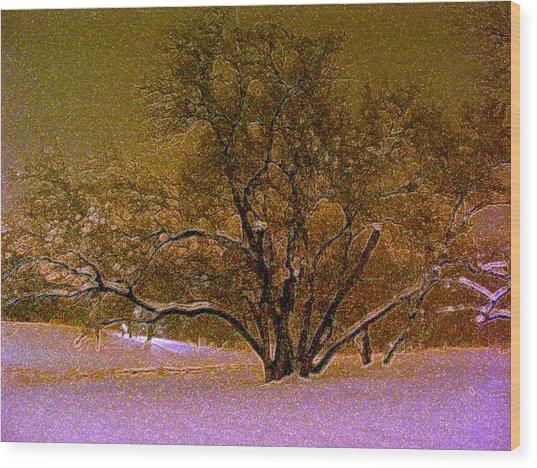 First Snowfall Wood Print by Sherwanda Irvin