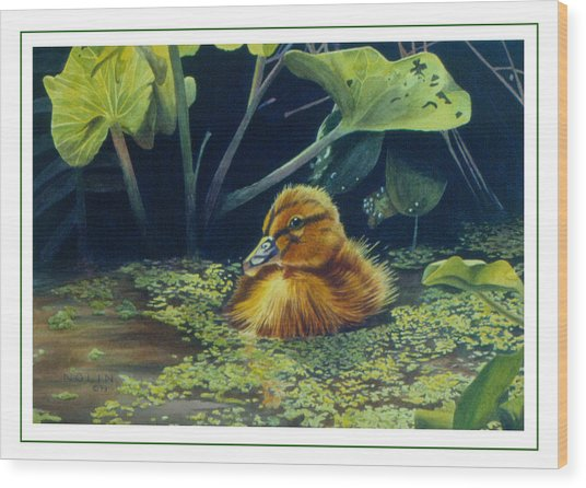 Wood Print featuring the painting First Spring - Mallard Duckling by Bob Nolin