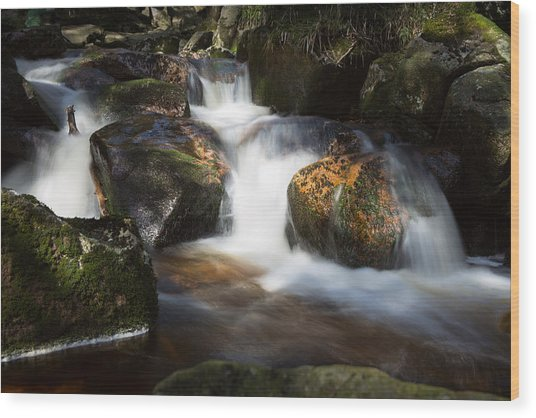 first spring sunlight on the Warme Bode, Harz Wood Print
