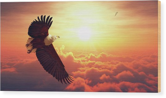 Fish Eagle Flying Above Clouds Wood Print