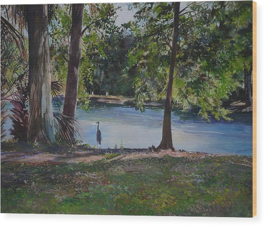 Fish Hunter's Of Palmetto Dunes Wood Print