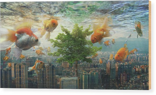 Fish Tank Wood Print by Andrew Kow