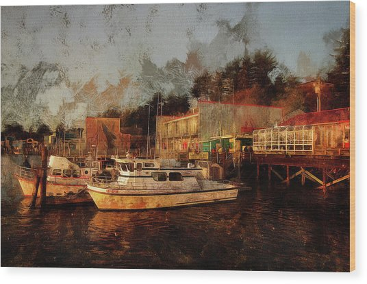 Wood Print featuring the photograph Fishing Trips Daily by Thom Zehrfeld