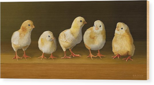 Wood Print featuring the digital art Five Chicks Named Moe by Bob Nolin