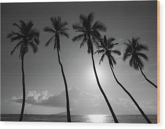 Five Coconut Palms Wood Print