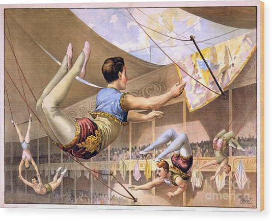 Five Male Trapeze Artists Performing At A Circus  Wood Print