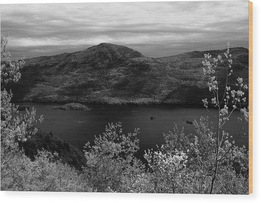 Five Mile Mt View Wood Print