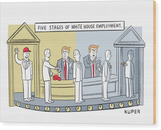 Five Stages Of White House Employment Wood Print
