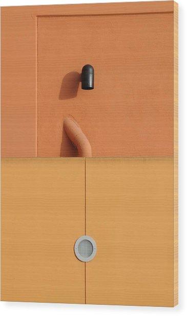 Fixtures Wood Print by Dan Holm