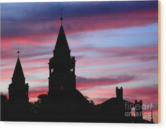 Flagler Towers Wood Print by Addison Fitzgerald
