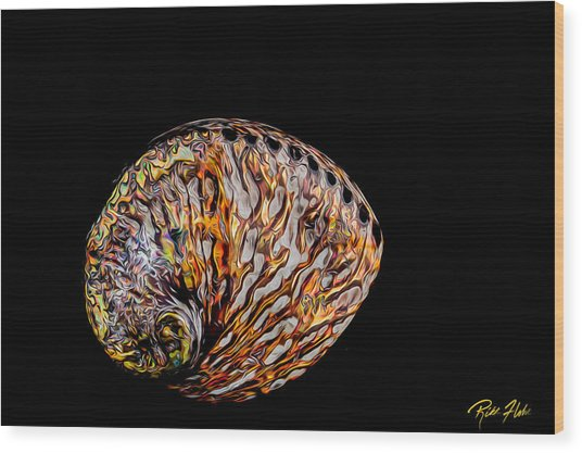 Flame Abalone Wood Print