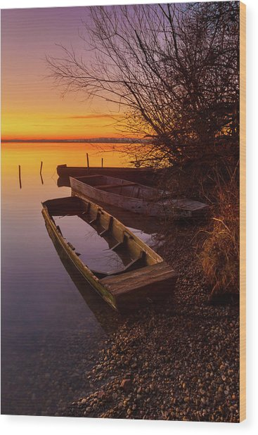 Wood Print featuring the photograph Flame Of Dawn by Davor Zerjav