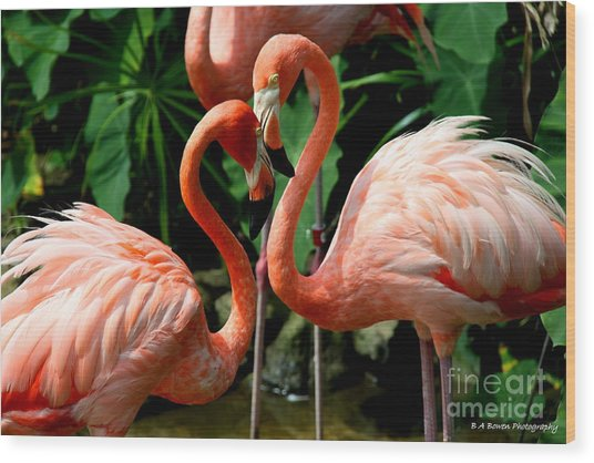 Flamingo Heart Wood Print