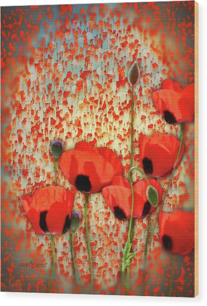 Flanders Fields Wood Print