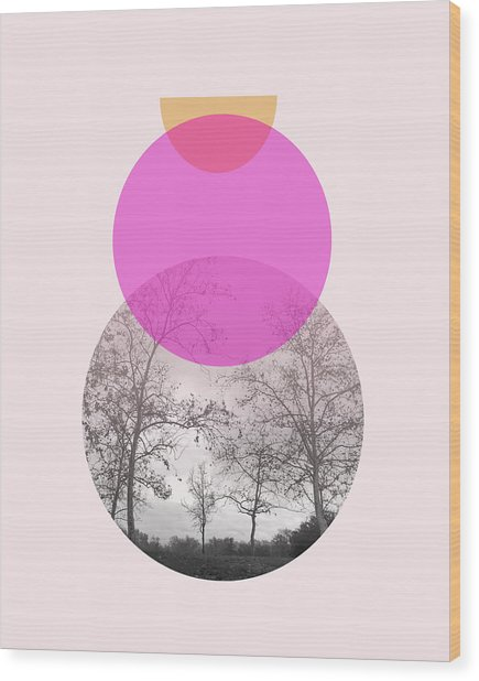 Flare In Pink And Yellow- Art By Linda Woods Wood Print