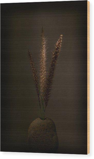 Flashlight Series 9-1 Wood Print