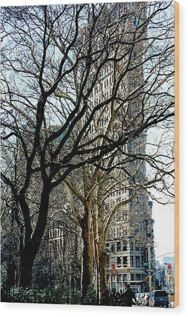 Flatiron Building Wood Print