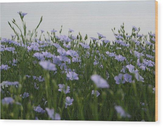 Flax V Wood Print