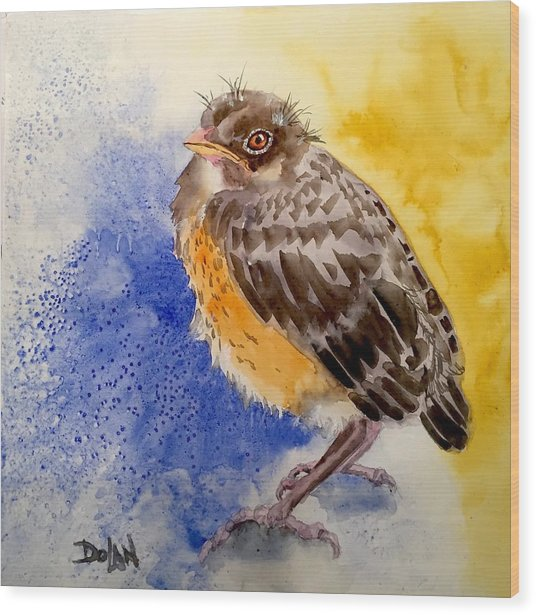 Fledgling Robin Wood Print