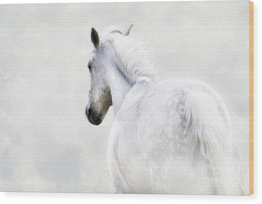 Fleeing Grey Horse Wood Print