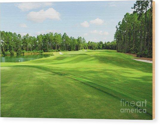 Fleming Island Golf Club Wood Print