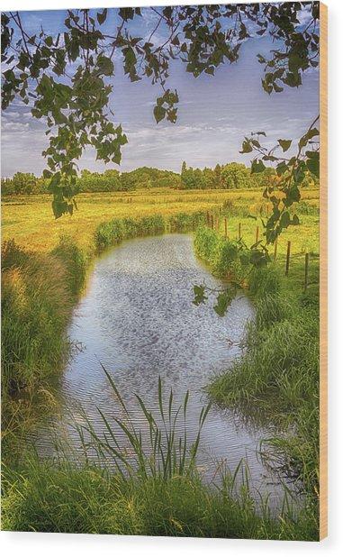 Flemish Creek Wood Print