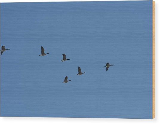 Flight Wood Print by Gregory Jeffries