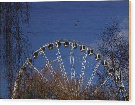 Flight Of The Ferris Wood Print by Jez C Self