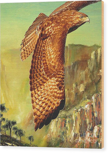 Flight Of The Red Tailed Hawk Wood Print by Wingsdomain Art and Photography