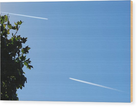 Flight Paths Wood Print by StudioBoldt   Photography