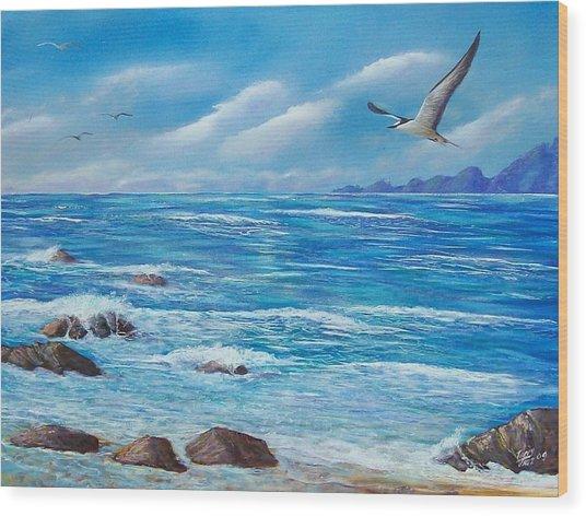 Flight Seascape Wood Print
