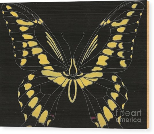 Flight Series 11 Yellow Tail Wood Print by Iamthebetty Tbone