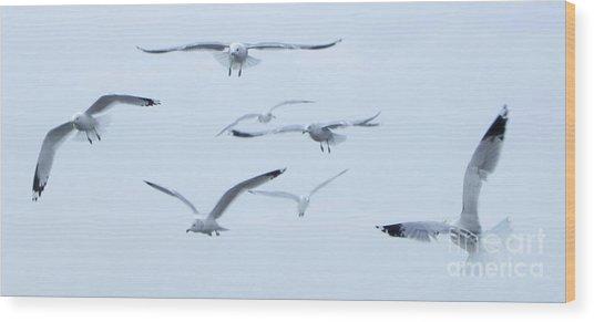 Flight Wood Print by Steve Rudolph