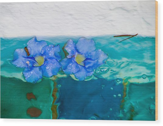 Floaters Wood Print