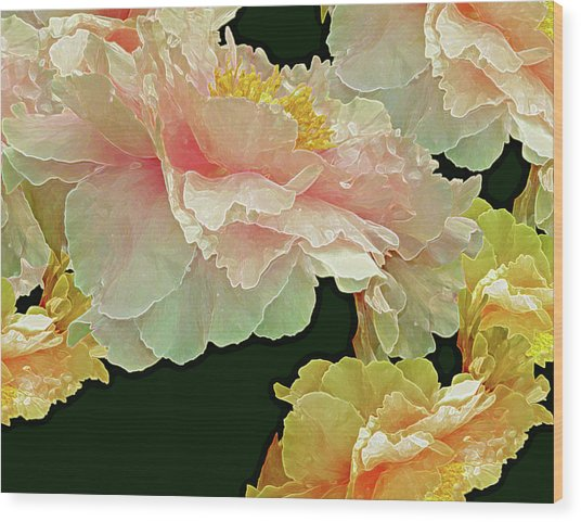 Wood Print featuring the photograph Floating Bouquet 31 by Lynda Lehmann