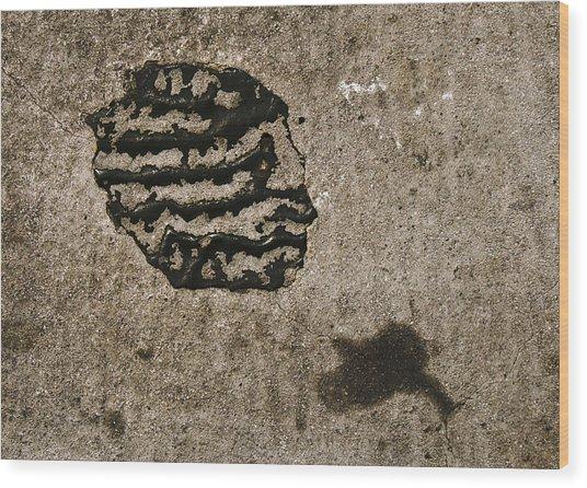 Abstract 95 Wood Print