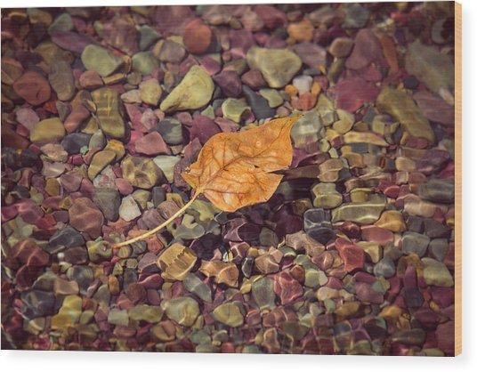 Floating Leaf Wood Print
