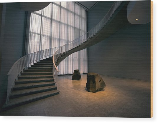 Floating Spiral Staircase Of Chicago Art Institute Wood Print