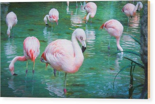 Flock Of Flamingos Wood Print